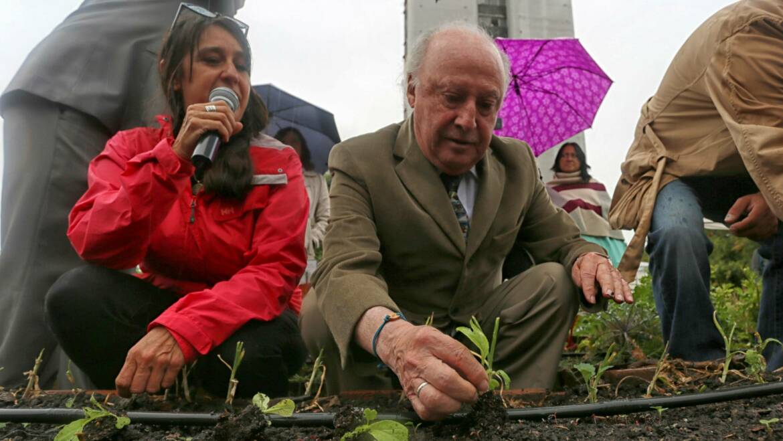 Agricultura Urbana – Fuente de alimento del futuro