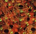 Aplicación de algoritmos genéticos en la arquitectura